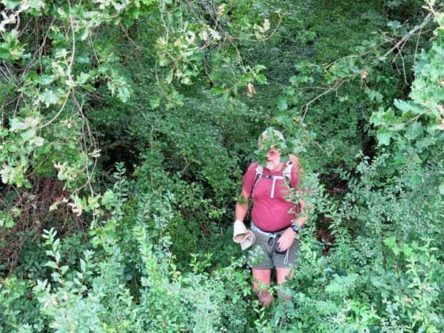 Walking in France: Battling through the regrowth