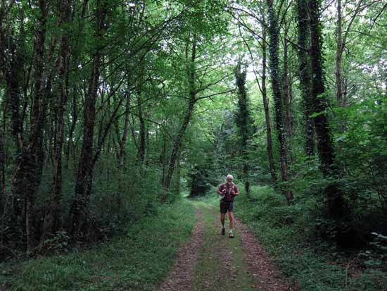 Walking in France: Bottom of a ravine