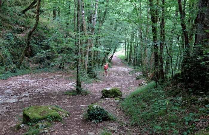 Walking in France: Descending to the Alzou river