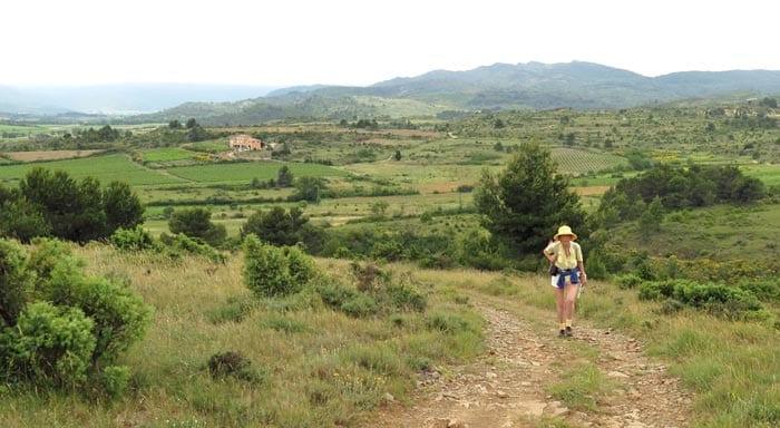 Walking in France: Climbing away from Montlaur