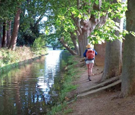 Walking in France: Heading for the Place Carnot and breakfast, Carcassonne