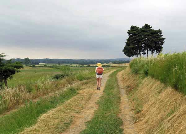 Walking in France: Approaching Pezens and disappointment