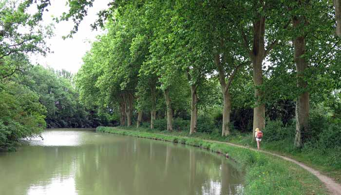 Walking in France: Back on the canal