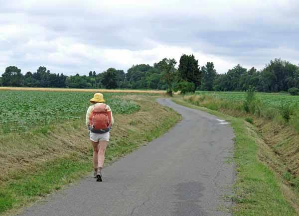 Walking in France: Near Alzonne
