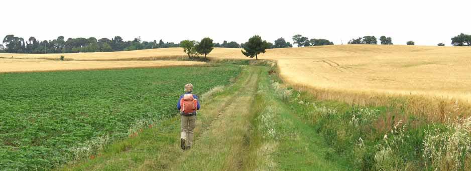 Walking in France: In the land of plenty