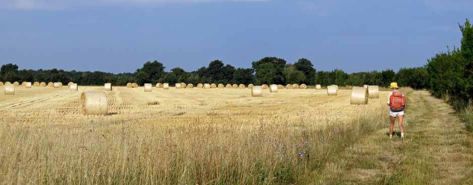 Walking in France: Newly harvested hay