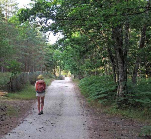 Walking in France: On the Chemin de Mehun (GR41A)