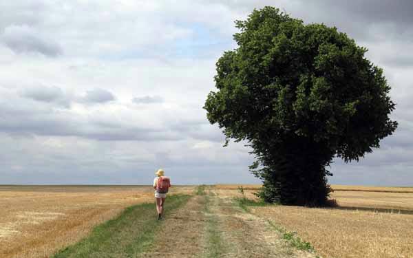 Walking in France: On a slight rise near Mehun-sur-Yèvre
