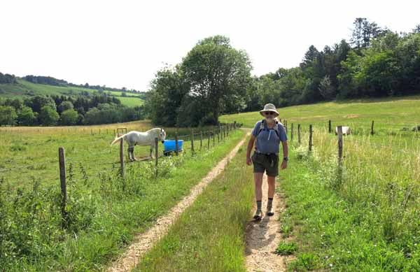 Walking in France: Leaving Savigny-lès-Beaune