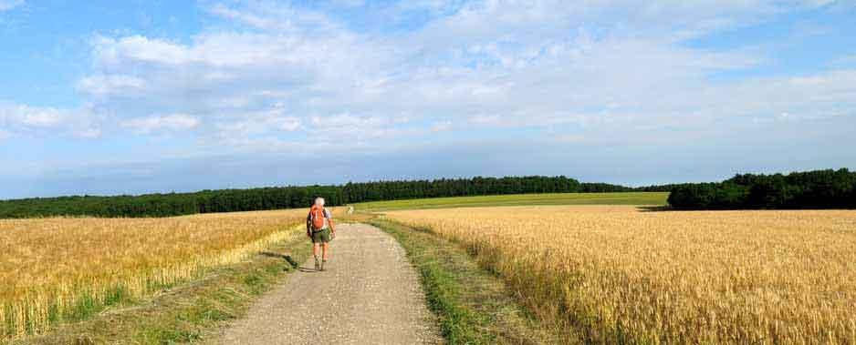 Walking in France: Following le Chemin de César near Tonnerre