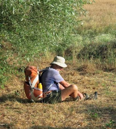 Walking in France: Seed removal