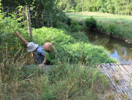 Walking in France: Daintily swinging around the fence to get onto the bridge