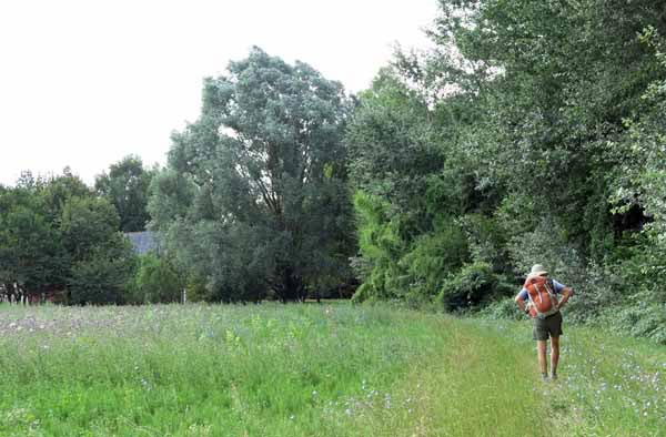 Walking in France: Flowering meadow and farmhouse