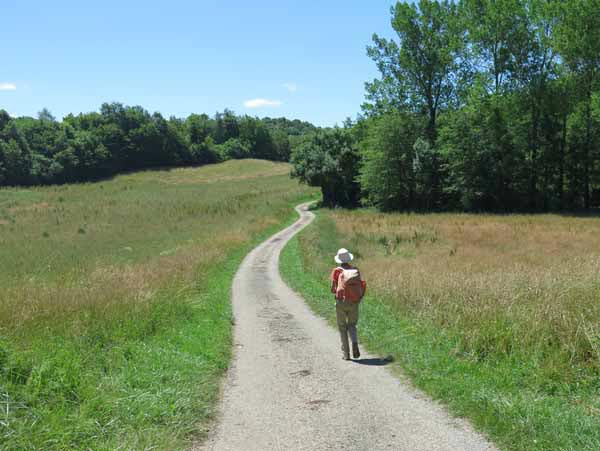 Walking in France: Emerging from the forest