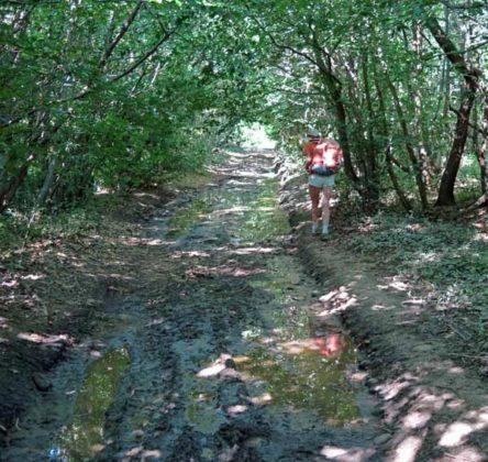 Walking in France: More mud