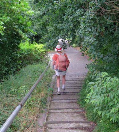 Walking in France: Descending to Clonas-sur-Varèze