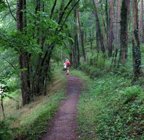 Walking in France: Descending to St-Julien-Molin-Molette