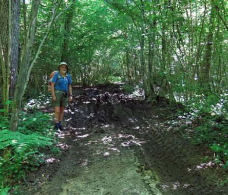 Walking in France: Heavy going near Mont Tournier
