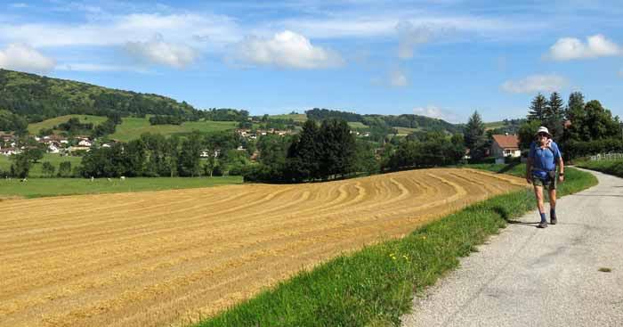 Walking in France: Leaving le Pin