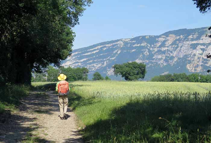 Walking in France: Mont Salève