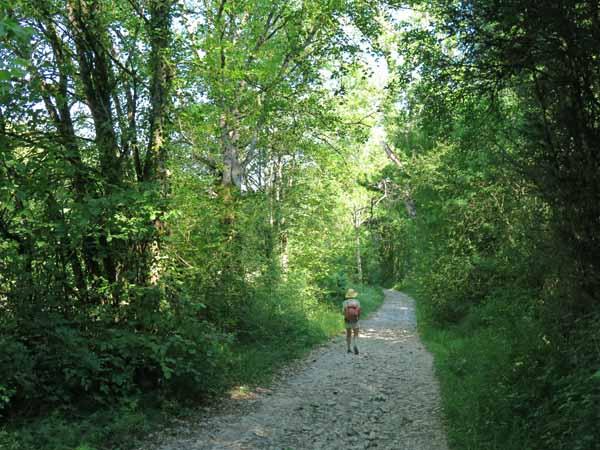 Walking in France: Descending to Treffort