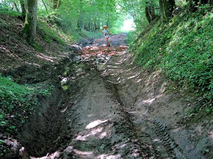 Walking in France: Negotiating some local road works