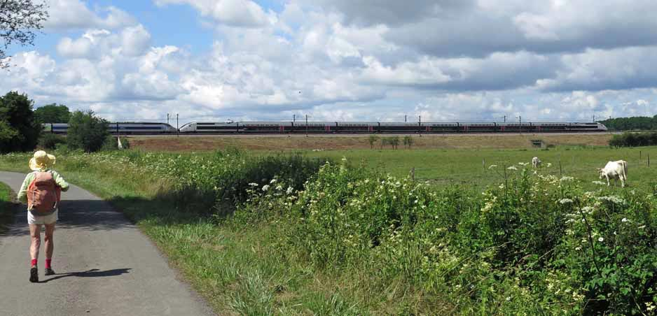 Walking in France: A TGV blasting through the countryside