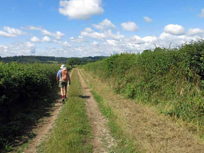 Walking in France: The Arnay to Autun Roman road
