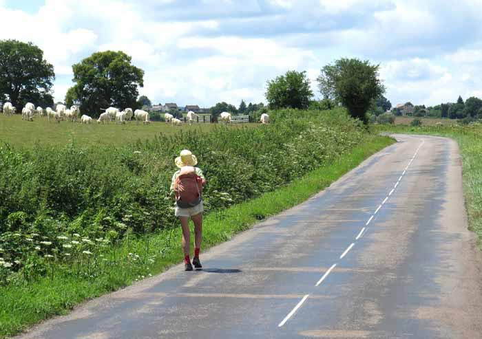 Walking in France: A pleasant detour on the D107