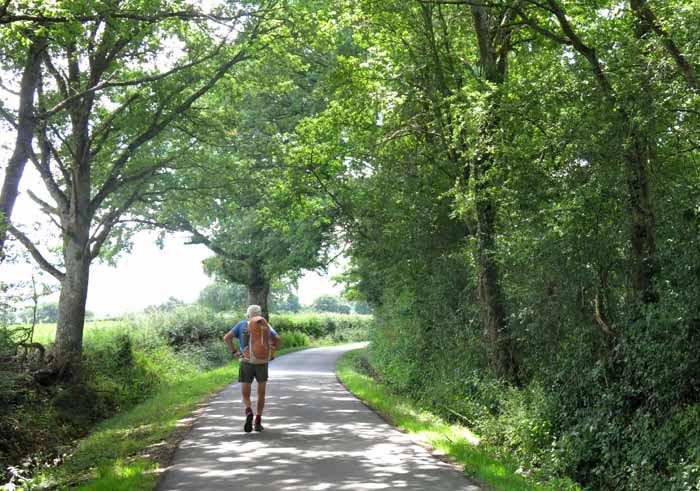 Walking in France: A lovely back way into Autun
