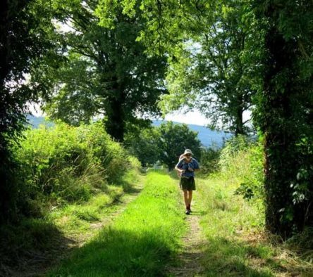 Walking in France: Finally, back on the wheel track near the château of Charmoy