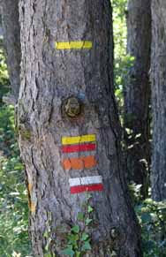 Walking in France: An abundance of route markers
