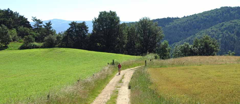 Walking in France: Almost down to river level