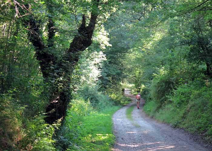 Walking in France: Leaving Dorat