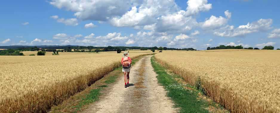 Walking in France: A hot finish to the day's walk