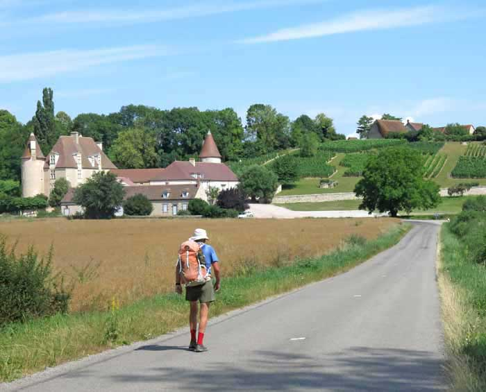 Walking in France: An immaculate vineyard and château