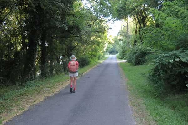 Walking in France: A cool tunnel of greenery