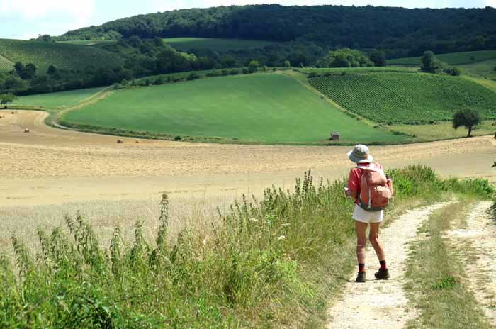 Walking in France: Leaving Chasnay