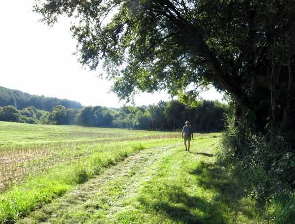 Walking in France: Back on the GR654