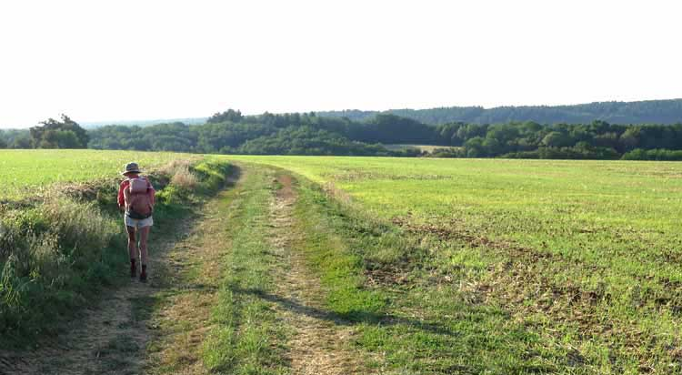 Walking in France: High above Clamecy